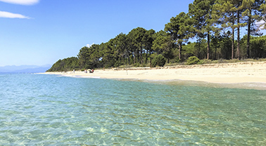camping 3 etoiles acces plage corse